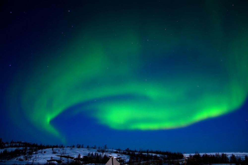 Festiwal Zorzy Polarnej - otwarcie wystawy